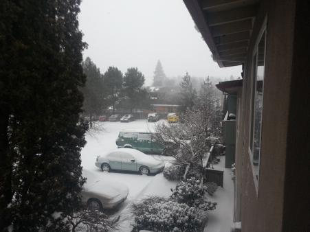 Snow outside apt 1402.06
