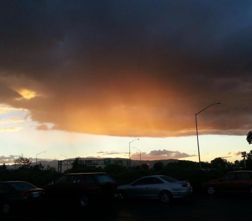 Medford sunlit rain 1