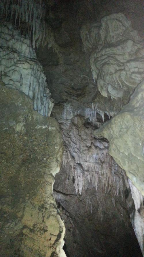 Oregon Caves stalactities
