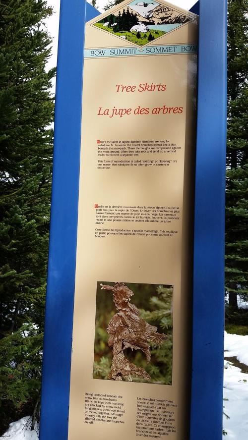 Tree skirt info