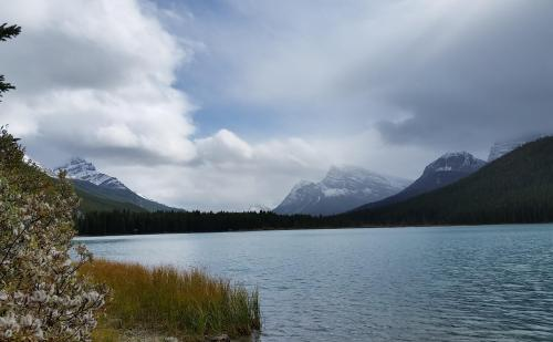 Waterfowl Lake 2