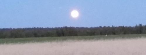 Bend full moon summer solstice