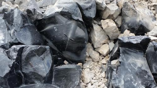 OR Newberry Big Obsidian Flow typical grouond 190625