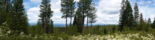 OR Newberry FS 21 scenic overlook190625